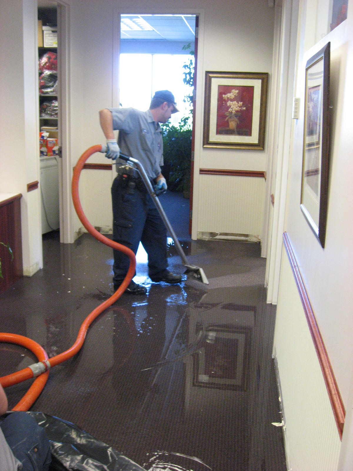 Water Removal in Naples